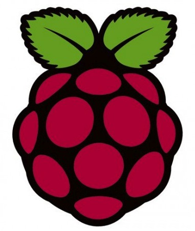 Introducing Raspberry Pi for Innovative Projects