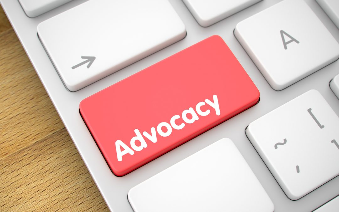 Auto What Libraries Can Learn from Other Organizations About Advocacy and Political Power