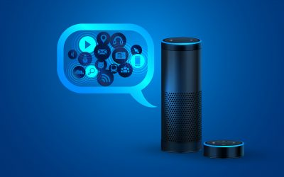 Voice Assistants and Smart Speaker @ the Library